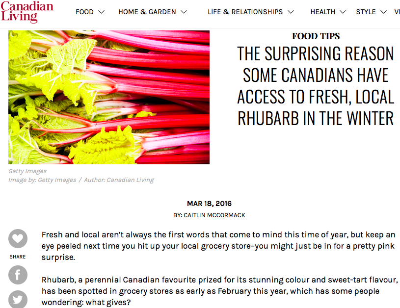 The Surprising Reason Some Canadians Have Access to Fresh, Local Rhubarb in the Winter